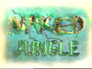 Image:Nakedjungle_logo.jpg